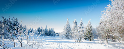 Foto op Plexiglas Blauwe hemel Paysage d'hiver