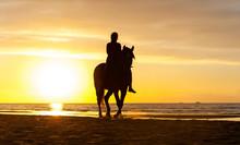 Silhouette Of Horseriding Alon...