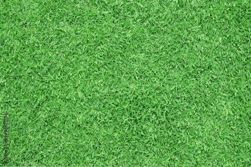 Fototapeta Green grass background. Top view obraz na płótnie