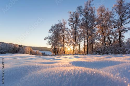 Fotografering  Winterlandschaft Schwarzwald