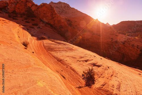 Deurstickers Oranje eclat Zion