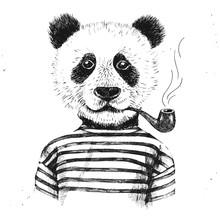 Hand Drawn Illustration Of Hipster Panda