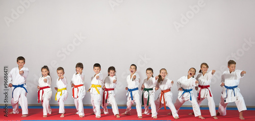 Photo Stands Martial arts sport karate kids