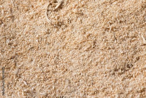 Fotografie, Obraz  sawdust as background