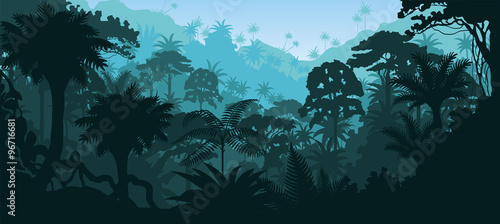 Foto Vector horizontal tropical rainforest Jungle background