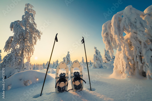 La pose en embrasure Glisse hiver Winter landscape with snowy trees and snowshoes