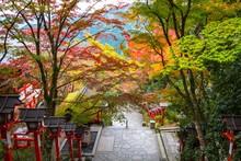 Kurama Shrine, Kyoto During Au...