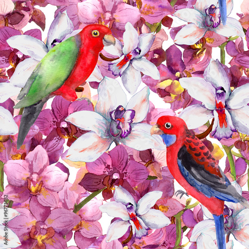 Poster Watercolor Nature Exotic floral pattern - parrot bird, blooming orchid flowers