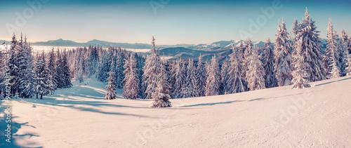 Sunne morning scene in the winter mountain. #96829481