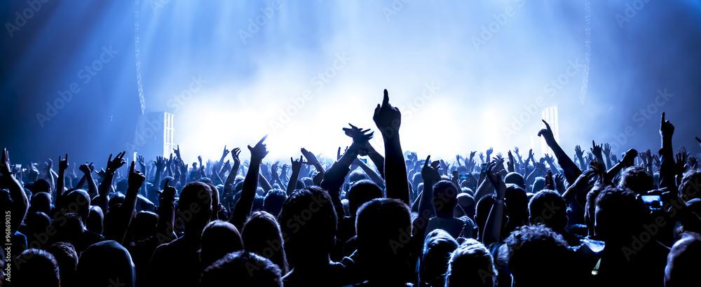 Fototapeta cheering crowd at a rock concert