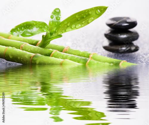 ogrod-japonski-zen-z-odbiciem-wody