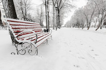 Red Bench In The Winter Park Russia