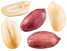 Peeled And Opened Peanuts.