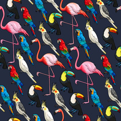 Panel Szklany Podświetlane Do przedpokoju Seamless exotic birds