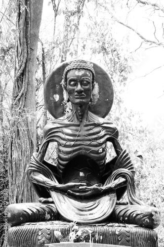 Photo Asceticism Buddha Statue