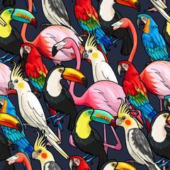 FototapetaSeamless exotic birds