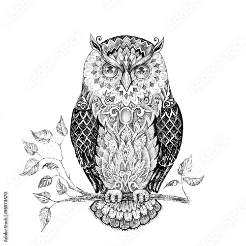 Poster Uilen cartoon Drawing owl with beautiful patterns