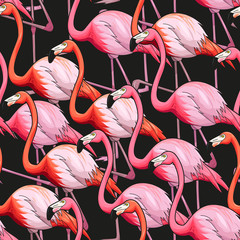 Fototapeta Zwierzęta Colorful flamingo seamless background