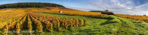 Fotografía  magnifique Bourgogne
