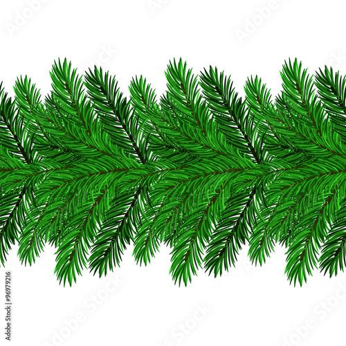 Garden Poster Plant Fir Green Branches