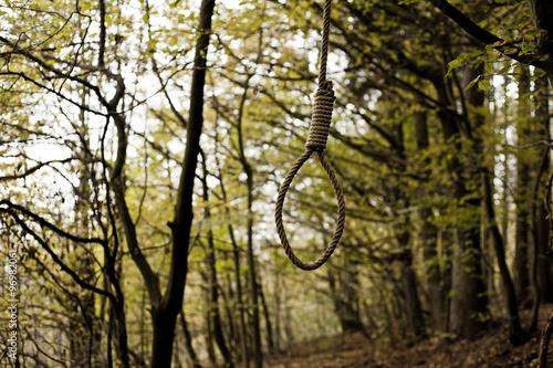 Fotografie, Obraz  Hanging Noose.