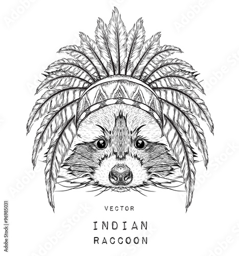 Wall Murals Hand drawn Sketch of animals Raccoon in the colored Indian roach. Indian feather headdress of eagle. Hand draw vector illustration