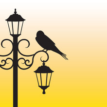 Silhouette Of Bird Sitting On Lamppost