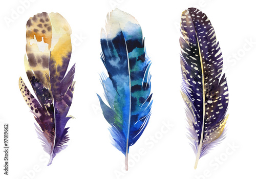Hand drawn watercolor feather set.  Boho style. illustration iso Tableau sur Toile
