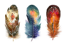 Hand Drawn Watercolor Feather Set.  Boho Style. Illustration Iso
