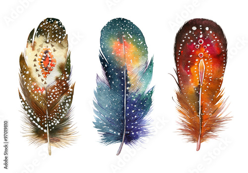 hand-drawn-watercolor-feather-set-boho-style-illustration-iso