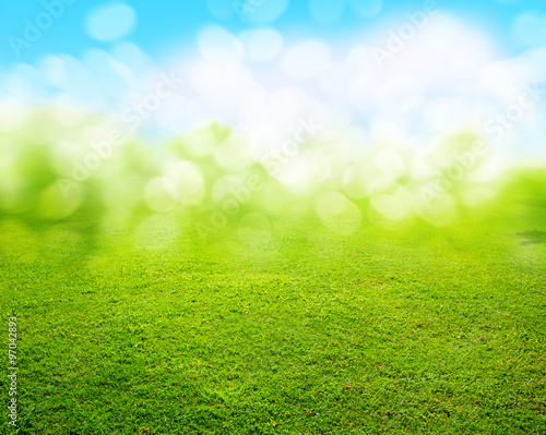 Garden Poster Spring grass background
