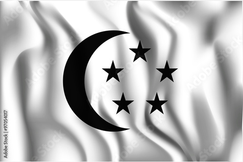 Photo  Singapore Variant Flag. Rectangular Shape Icon