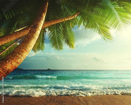 sunset on Seychelles beach #97059809