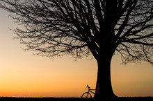 Silhouette Of A Bike Leaning A...