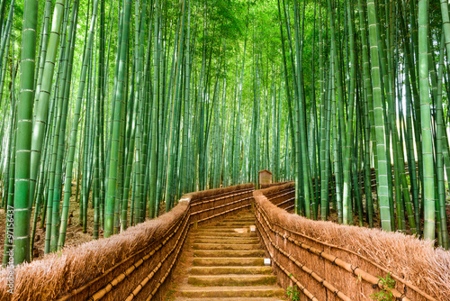 Spoed Foto op Canvas Bamboo Kyoto, Japan Bamboo Forest