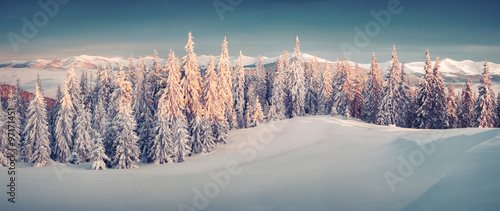 Sunny morning panorama in the winter mountain #97171451