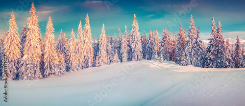Colorful winter panorama of snowy mountains. #97171477