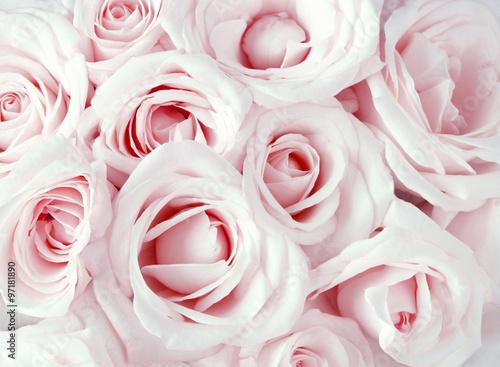 miekkie-rozowe-dmuchane-roze