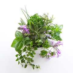 FototapetaHerbs in a bowl isolated