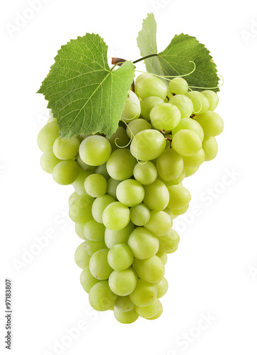 Fotografiet  Fresh green grapes