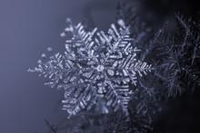 Natural Snowflake Crystal On Dark Background
