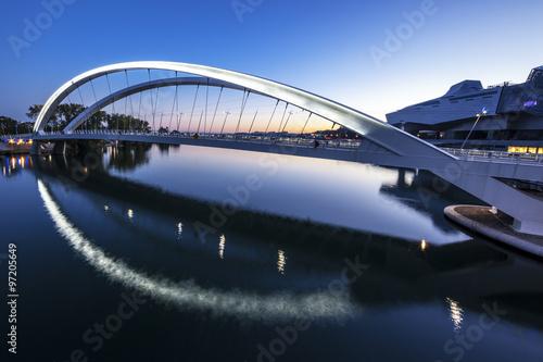 In de dag Brug Rhone river, Lyon