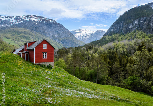 Red wooden cottage in the valley Poster