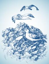 Seagulls Over Rocky Sea Shore Etch, Label Design