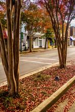 Autumn Season In Downtown Of W...