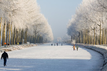 People Ice Skating On A Frozen Canal In Damme, Belgium, Europe. White Trees And Snow Landscape.