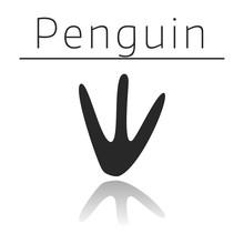 Penguin Animal Track