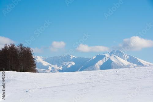 Fototapeta 雪原と山並み