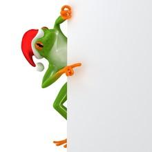 Tropical Christmas Frog