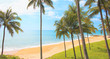 Beautiful tropical beach hidden between coconut palm trees